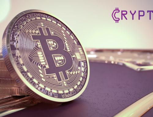 Cryptex – Bitcoin Ecosystem